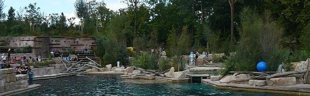 Delphinlagune Tiergarten Nürnberg